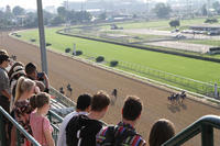 Kentucky Derby Museum Tour