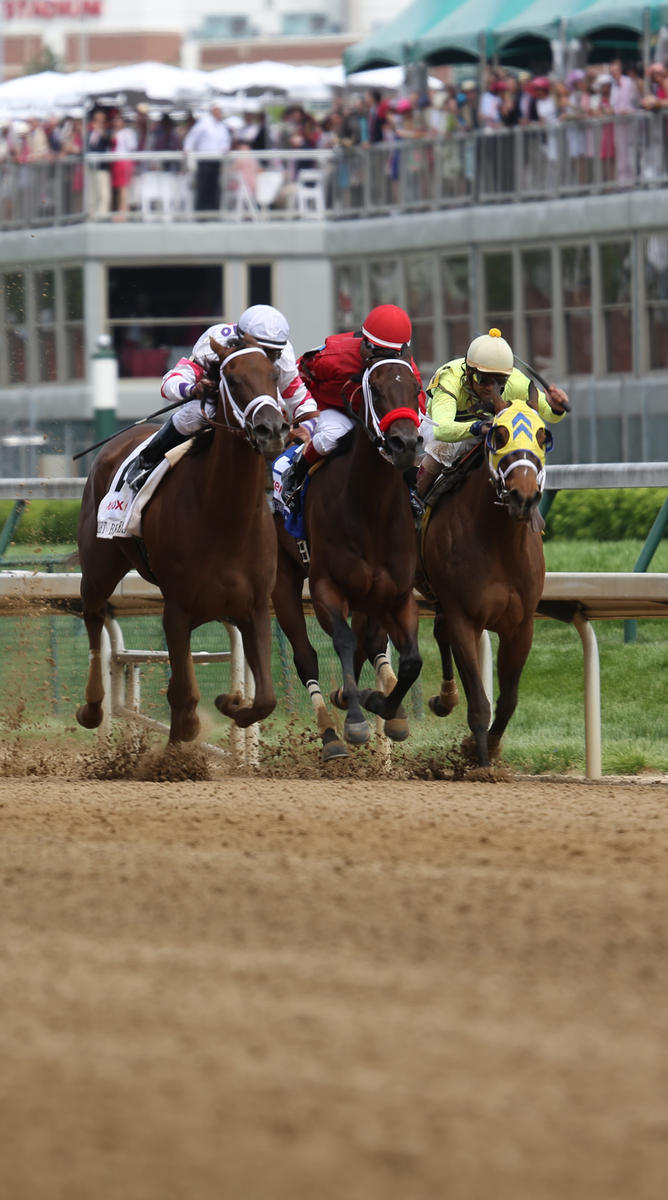 Experience the Kentucky Derby in Louisville, Kentucky