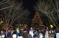 Annual Holiday Tree Lighting