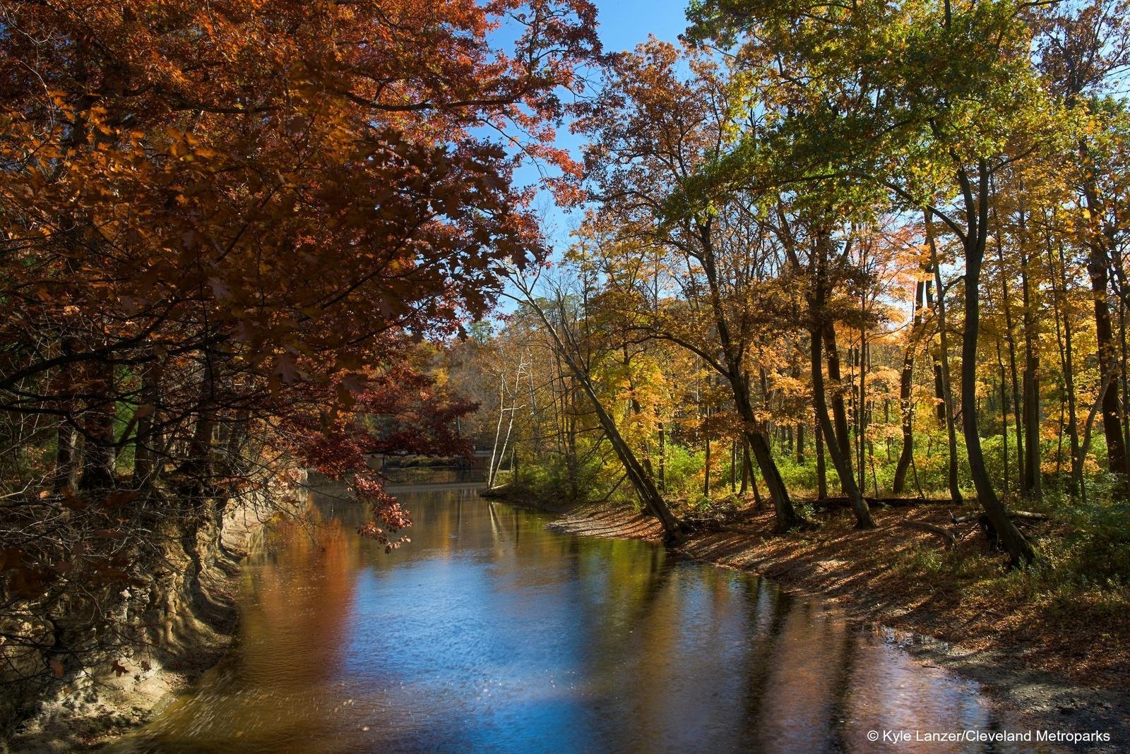 Leaf Peeping In & Around Cleveland