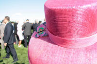 Kentucky Oaks 2019 Puts the Focus on the Fillies           Follow @nyccitiview