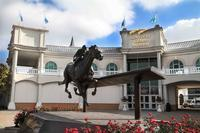 Kentucky Derby Museum Barn and Backside Van Tour at Churchill Downs           Follow @nyccitiview