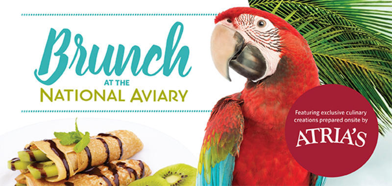 Brunch at the National Aviary