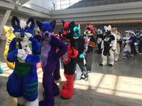 Anthrocon 2019